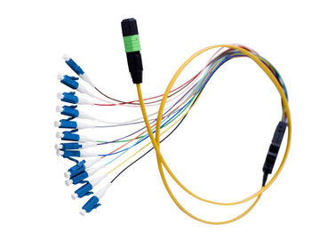 China Flat Round MPO MTP Fiber Optic Patch Cord , 12 Core Ribbon Fiber Cable OFNR Jacket supplier