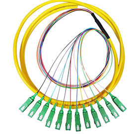 China 12 Core SC 3mm Fiber Optic Pigtail , Single Mode / Multimode Pigtail supplier
